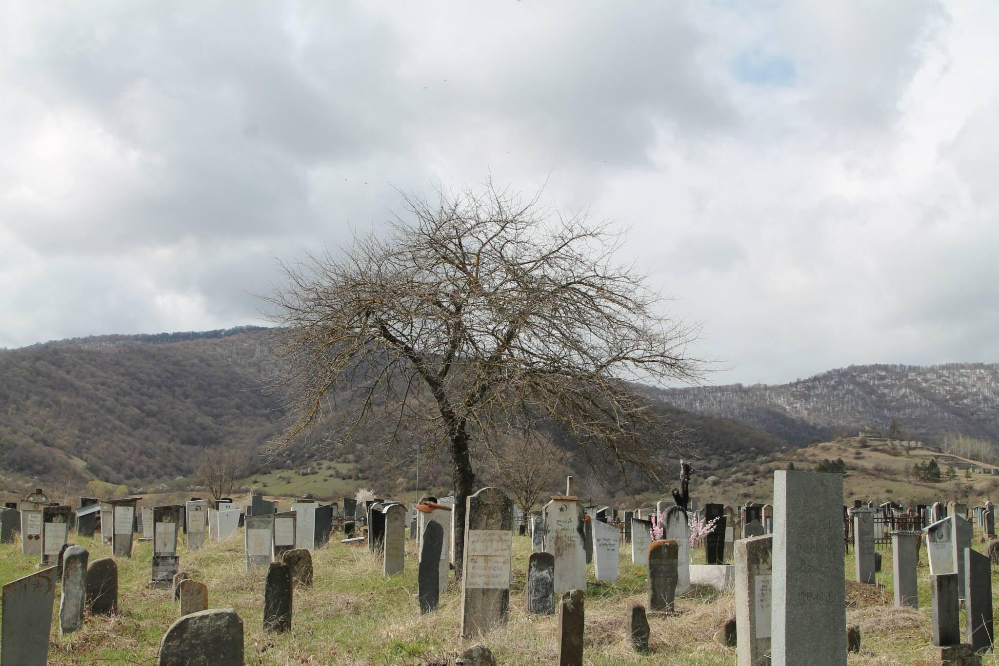 Кладбище в селе Дуиси. Панкисское ущелье Грузии (фото: sova.news)
