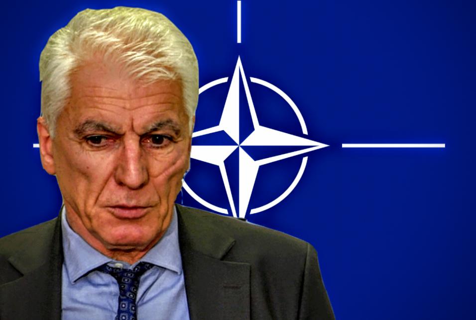 Депутат Тамаз Мечиаури против вступления Грузии в НАТО