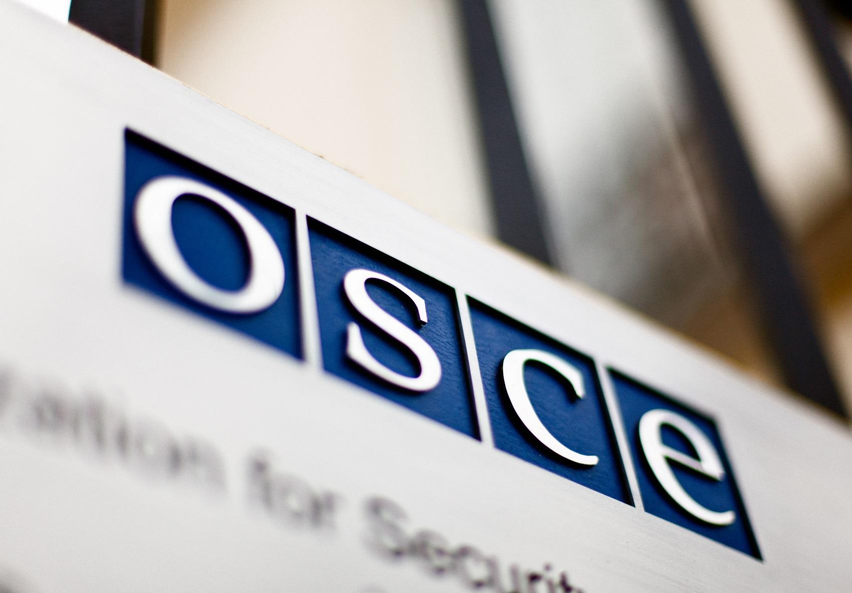Делегация России примет участие в летней сессии ПА ОБСЕ в Тбилиси
