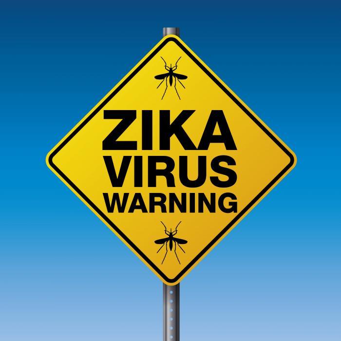 Вирус Зика в Пуэрто-Рико: объявлено чрезвычайное положение