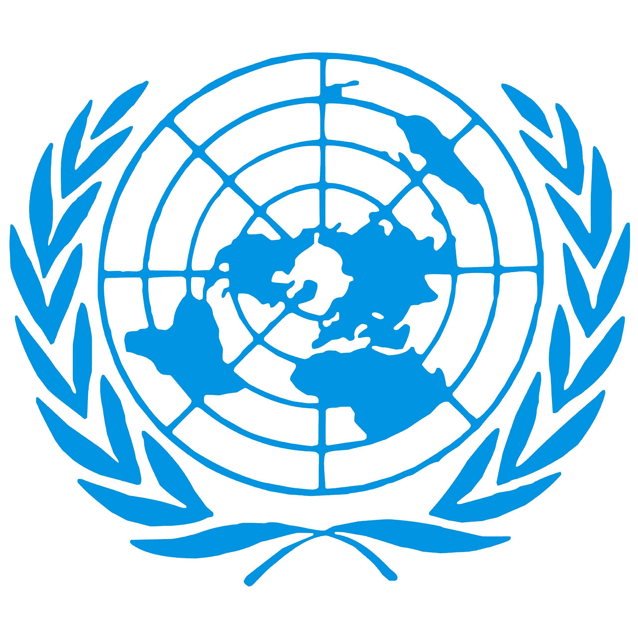 Комитет ООН принял резолюцию по Крыму