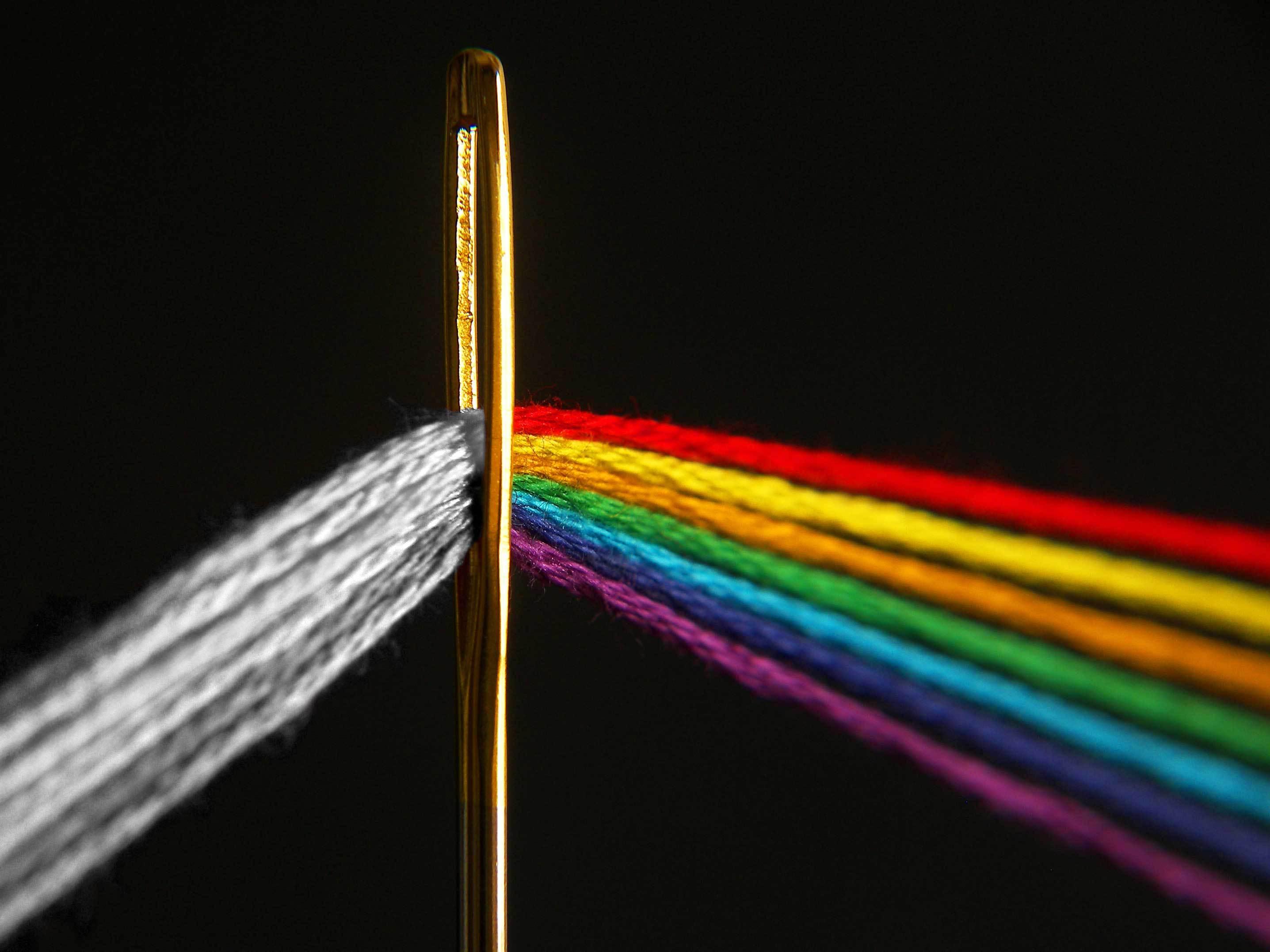 Новый закон запрещает чиновникам притеснять представителей ЛГБТ