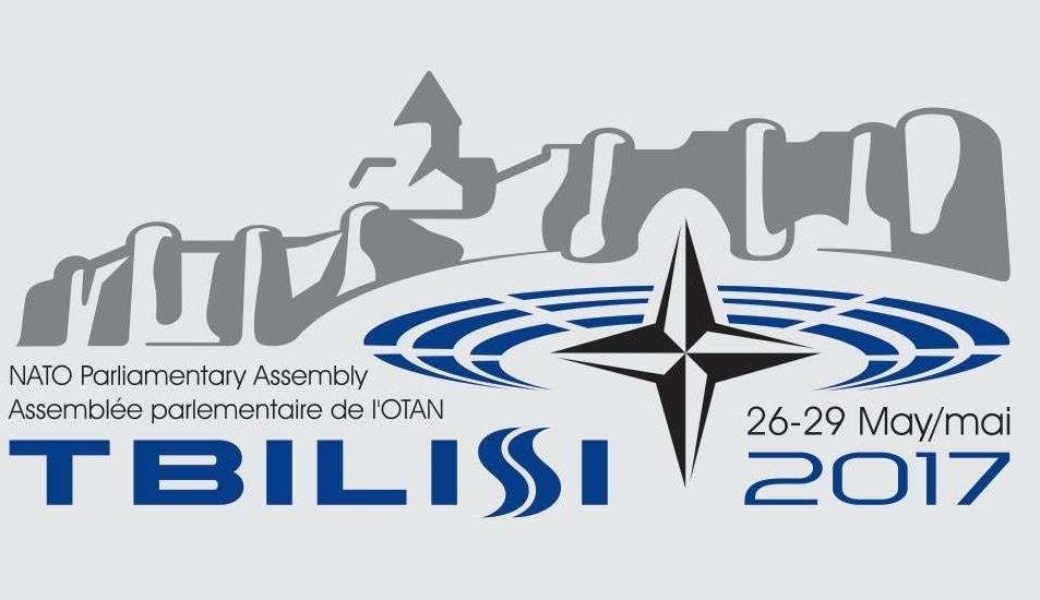 ПА призывает страны НАТО поддержать интеграцию Грузии в альянс