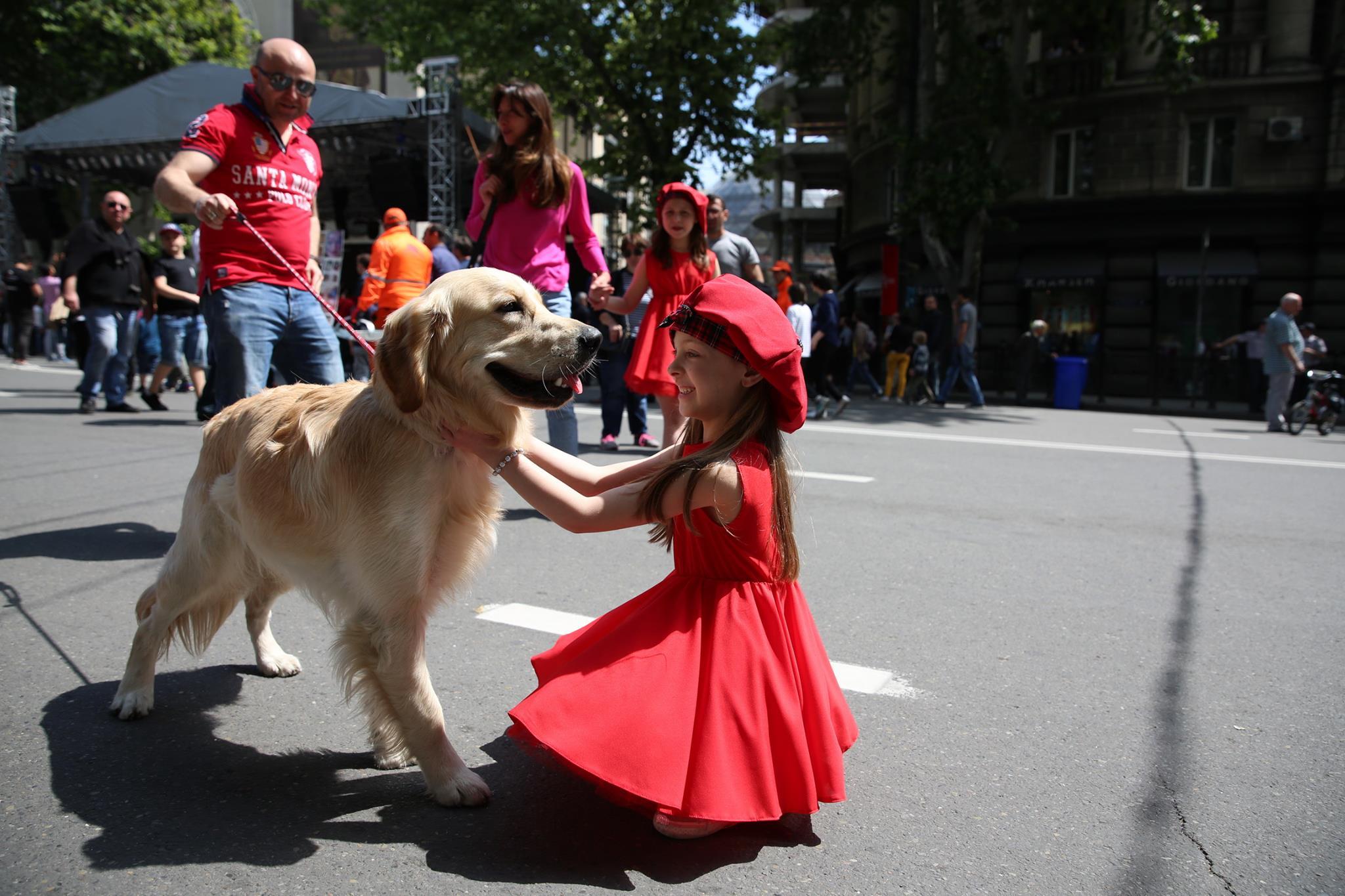 18700636 460864247591938 2880011521580422169 o #новости Грузия, День Независимости, тбилиси