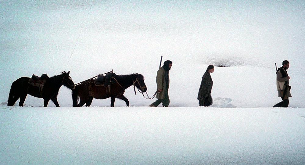 Грузинский фильм «Динола» - главный призер Amarji International Film Festival