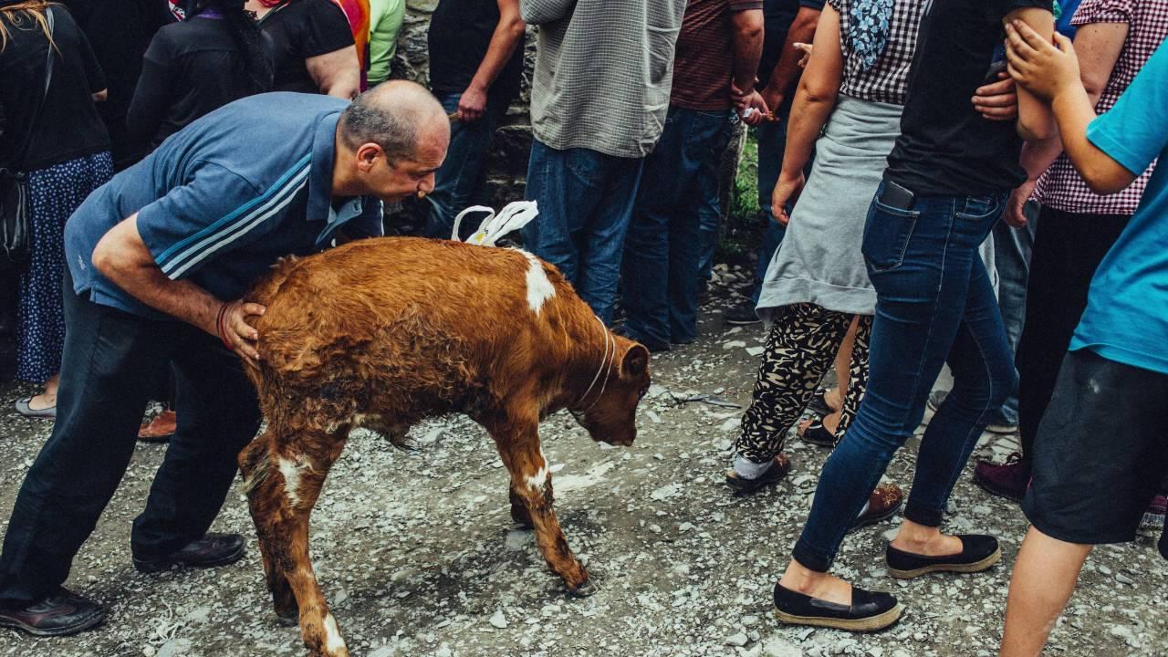#новости Грузия, ломисоба, МВД Грузии, паломники, спасатели
