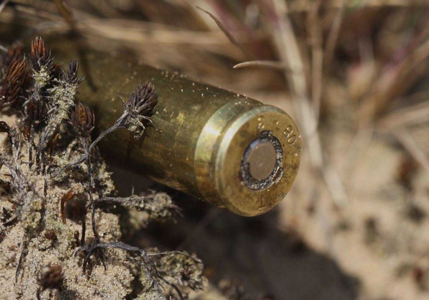 Роль армянских батальонов вновь в повестке дня Сухуми