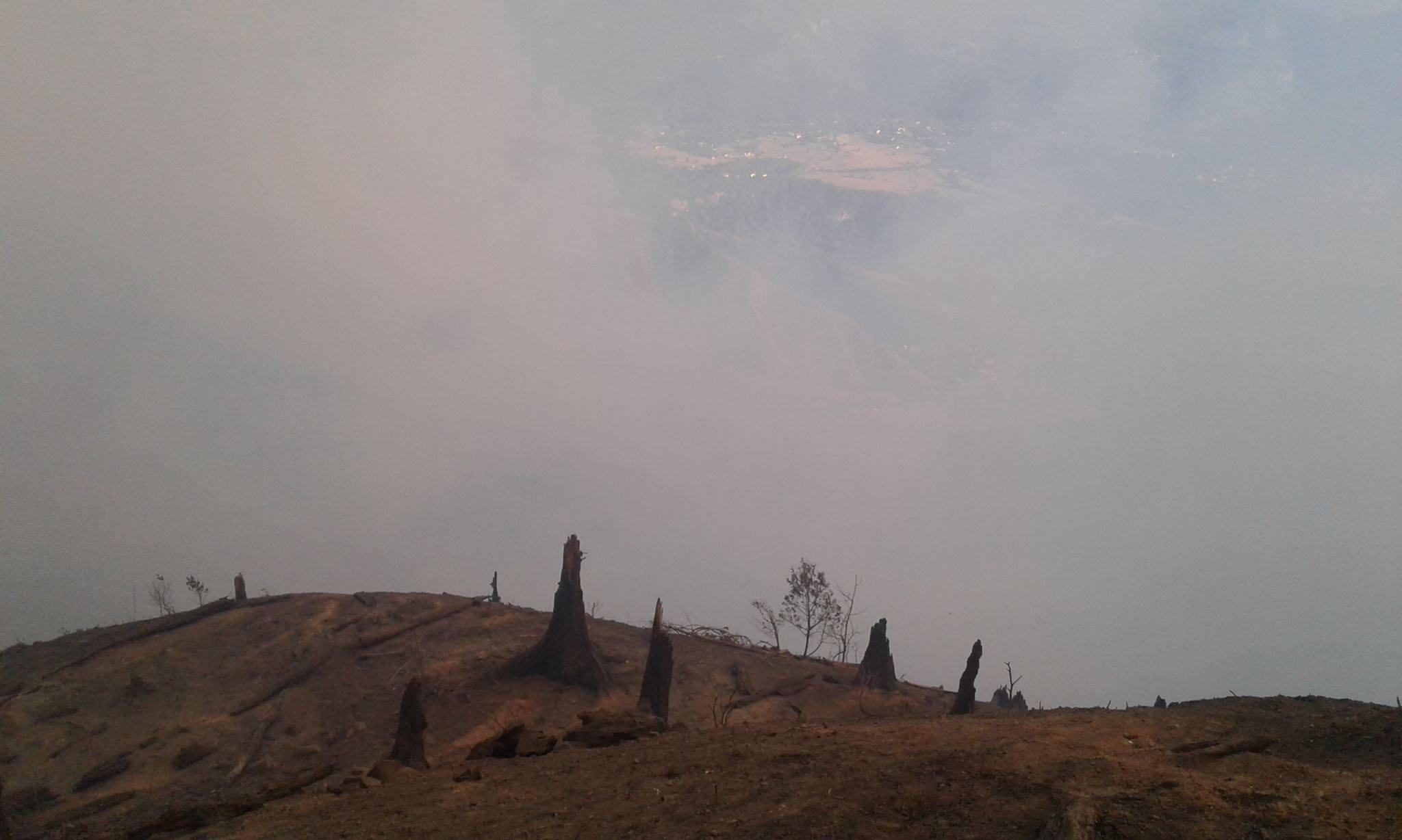 20934766 2163671283661587 6362047245637284889 o #фоторепортаж Боржомское ущелье, Грузия, пожар, фото