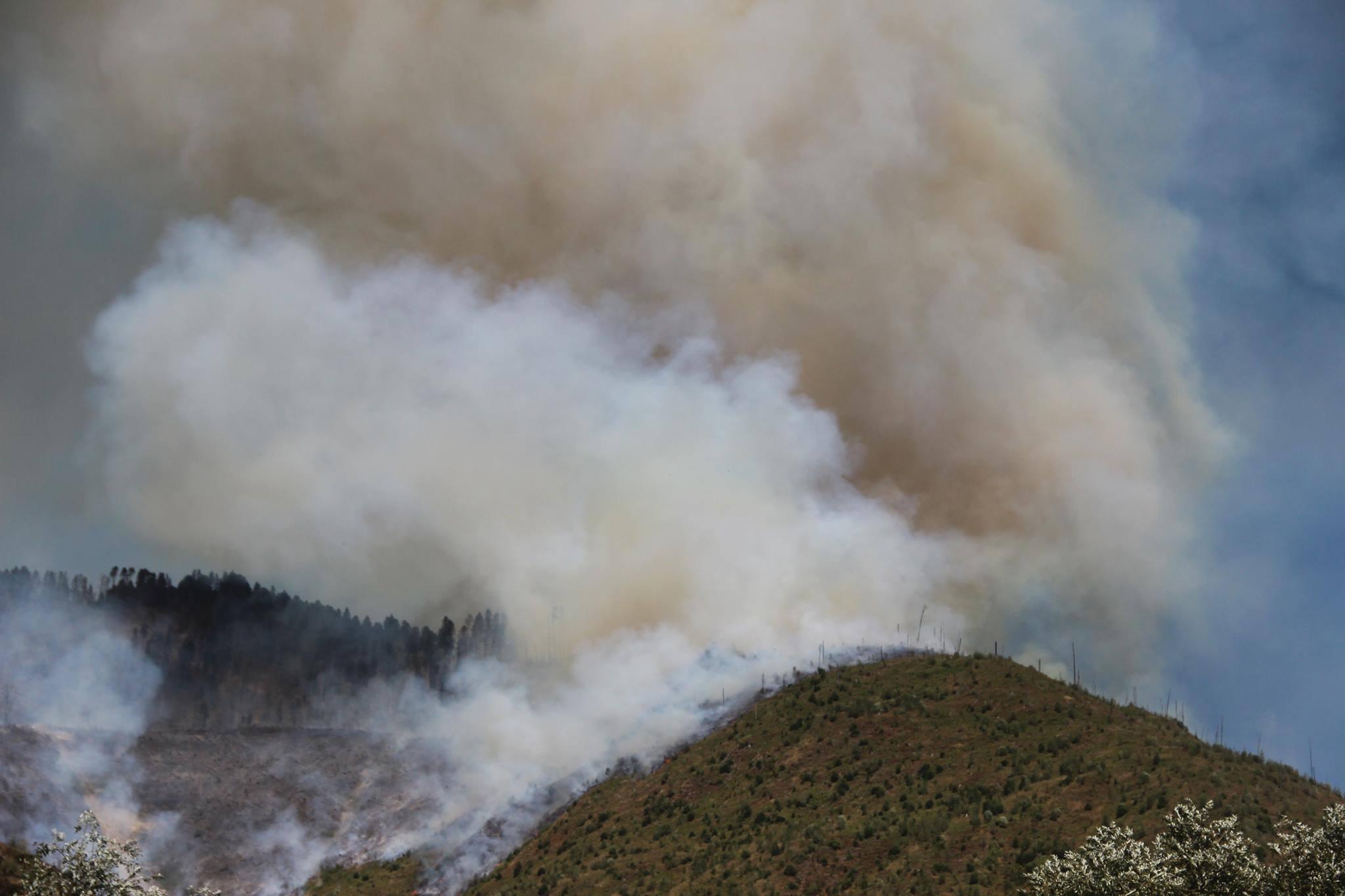 20934967 1483222951734670 4429181243014986970 o #новости featured, Боржоми-Харагаульский парк, боржомский лес, вертолеты, Грузия, пожар, помощь