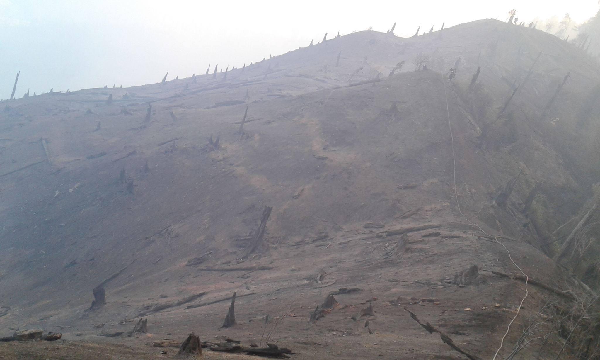20989003 2163669920328390 2981086301737618932 o #фоторепортаж Боржомское ущелье, Грузия, пожар, фото