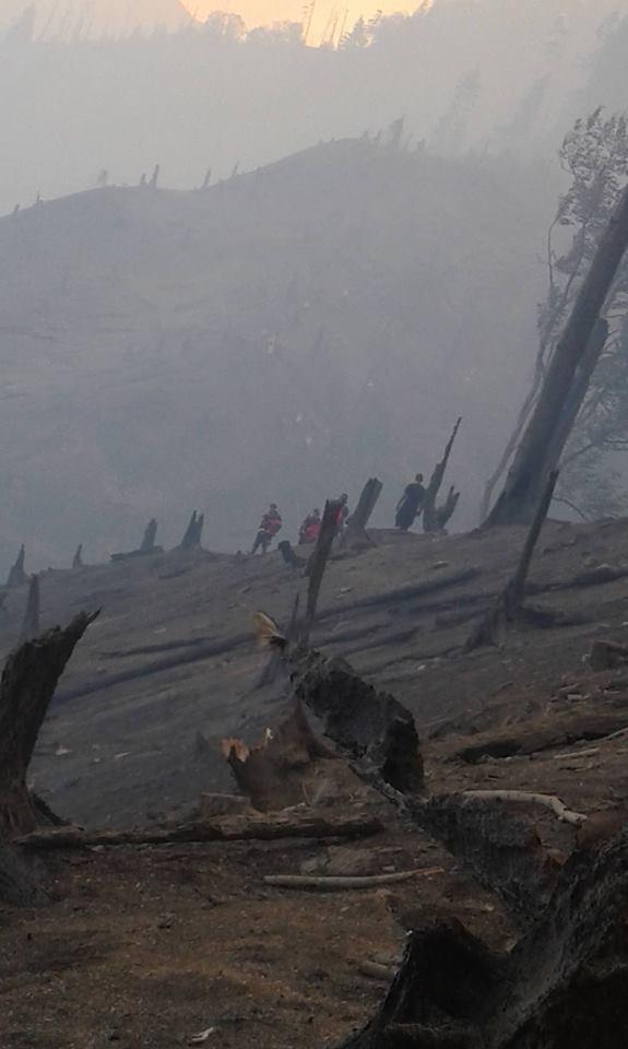 20992960 2163670703661645 7566240239991098895 n #фоторепортаж Боржомское ущелье, Грузия, пожар, фото