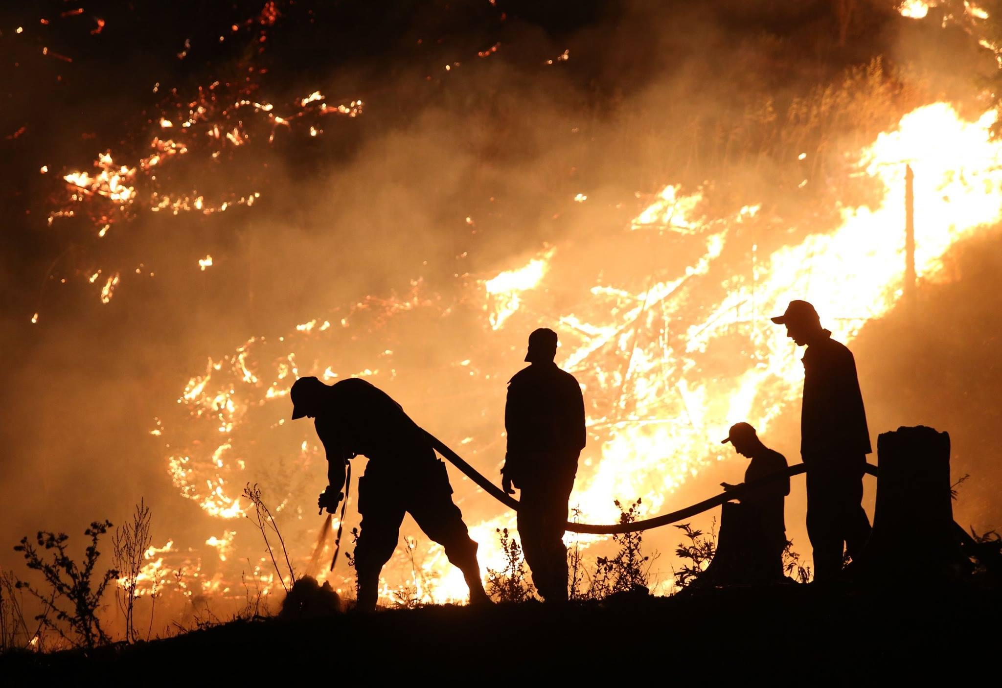 21014218 503821976629498 7304162394807568288 o #новости featured, Боржоми-Харагаульский парк, боржомский лес, вертолеты, Грузия, пожар, помощь