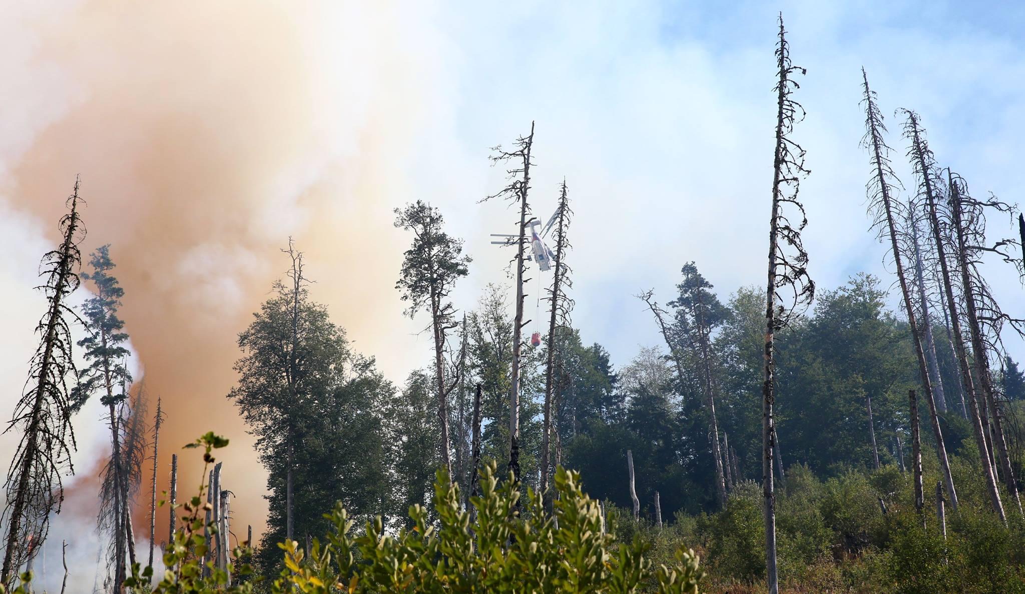 21055006 504003123278050 3250632501886174140 o #новости featured, Боржоми-Харагаульский парк, боржомский лес, вертолеты, Грузия, пожар, помощь