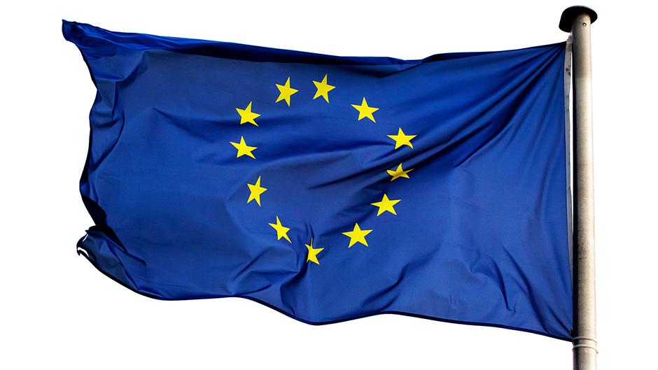 EU Flag СОВЕТ ЕВРОПЫ СОВЕТ ЕВРОПЫ