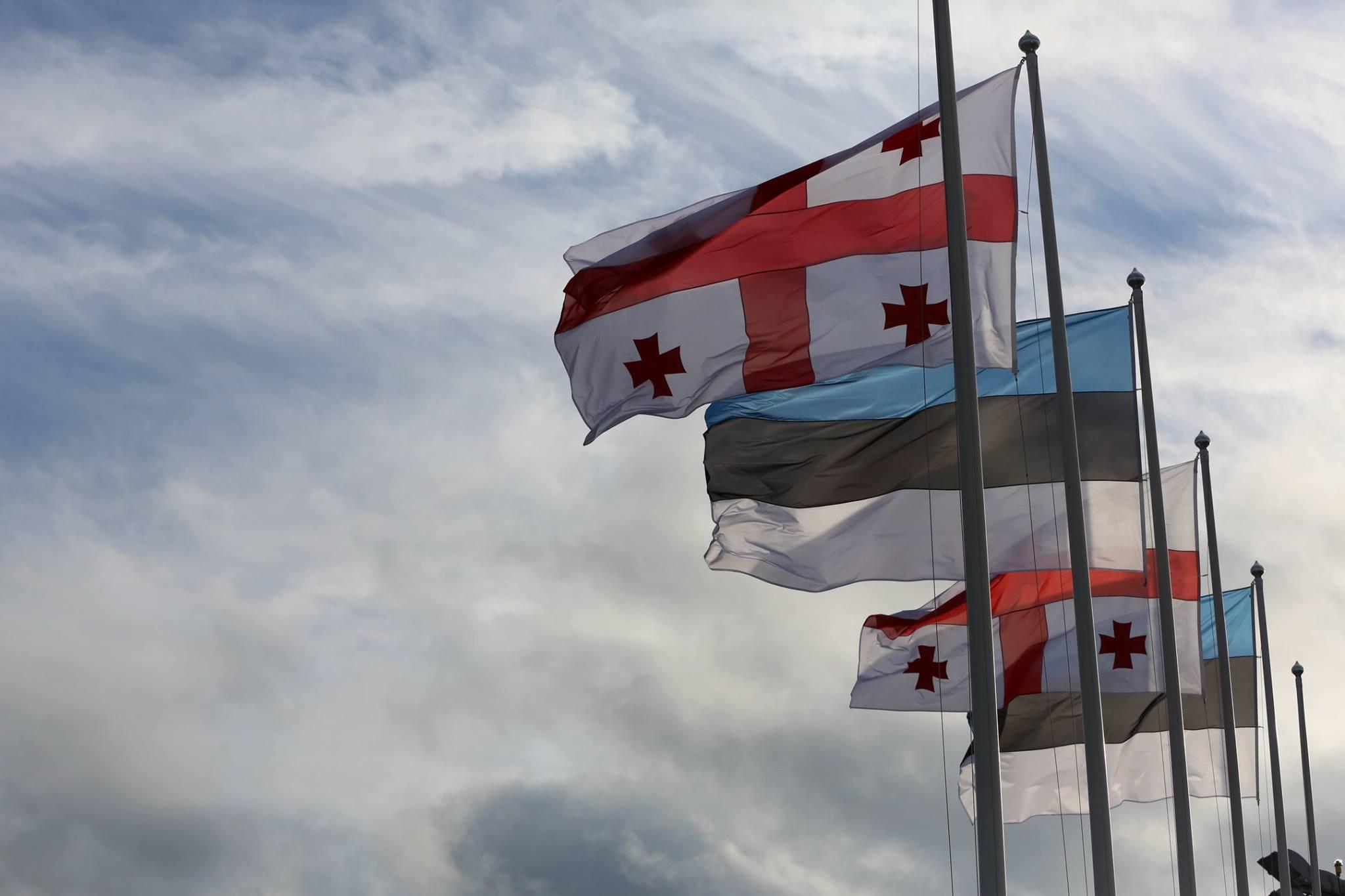 Georgia Estonia Flags #новости задержание Ники Мелия, кризис Мечты, Латвия, Литва, Эстония