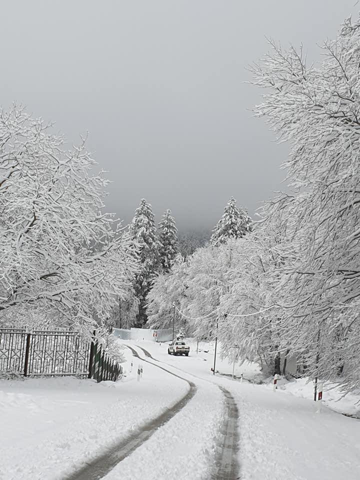 96214236 3474995372528033 6944402874235355136 n #новости Бакуриани, снег