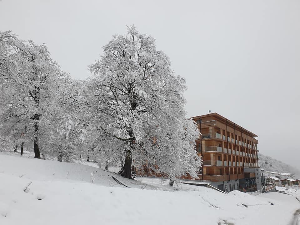 97307222 3474994745861429 1571281371123417088 n #новости Бакуриани, снег