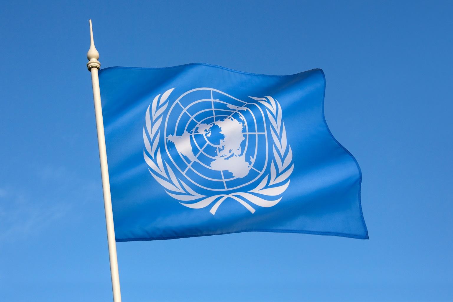 the flag of the united nations was adopted on dece KN5RHNR неправительственный сектор неправительственный сектор