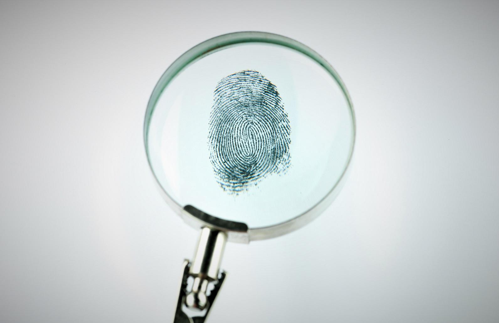 fingerprint through magnifying glass PFTHN66 Георгий Шакарашвили Георгий Шакарашвили
