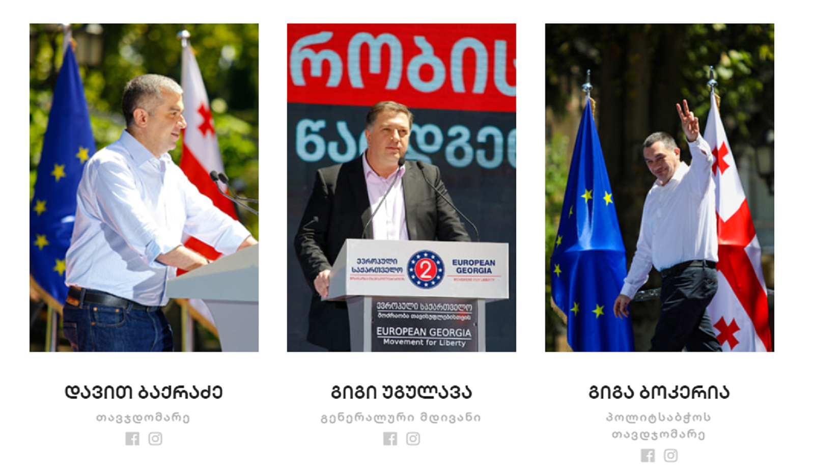 329085252 #политика featured, Гига Бокерия, Гиги Угулава, Давид Бакрадзе, Европейская Грузия, Зураб Чиаберашвили, Элене Хоштария