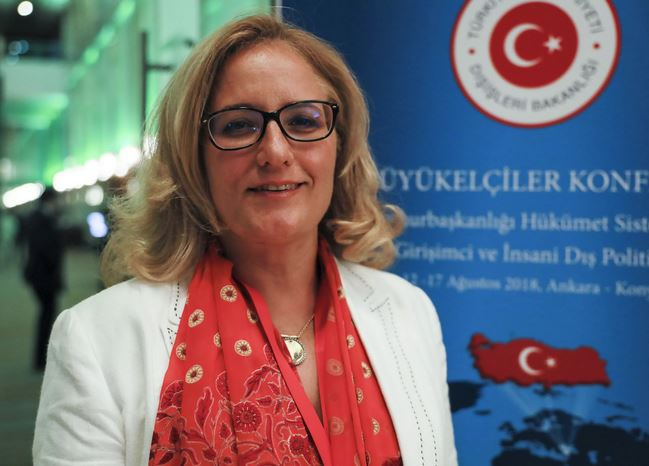 348 #новости Намахванская ГЭС, посол Турции, протест, Турция, Фатма Джерен Язган