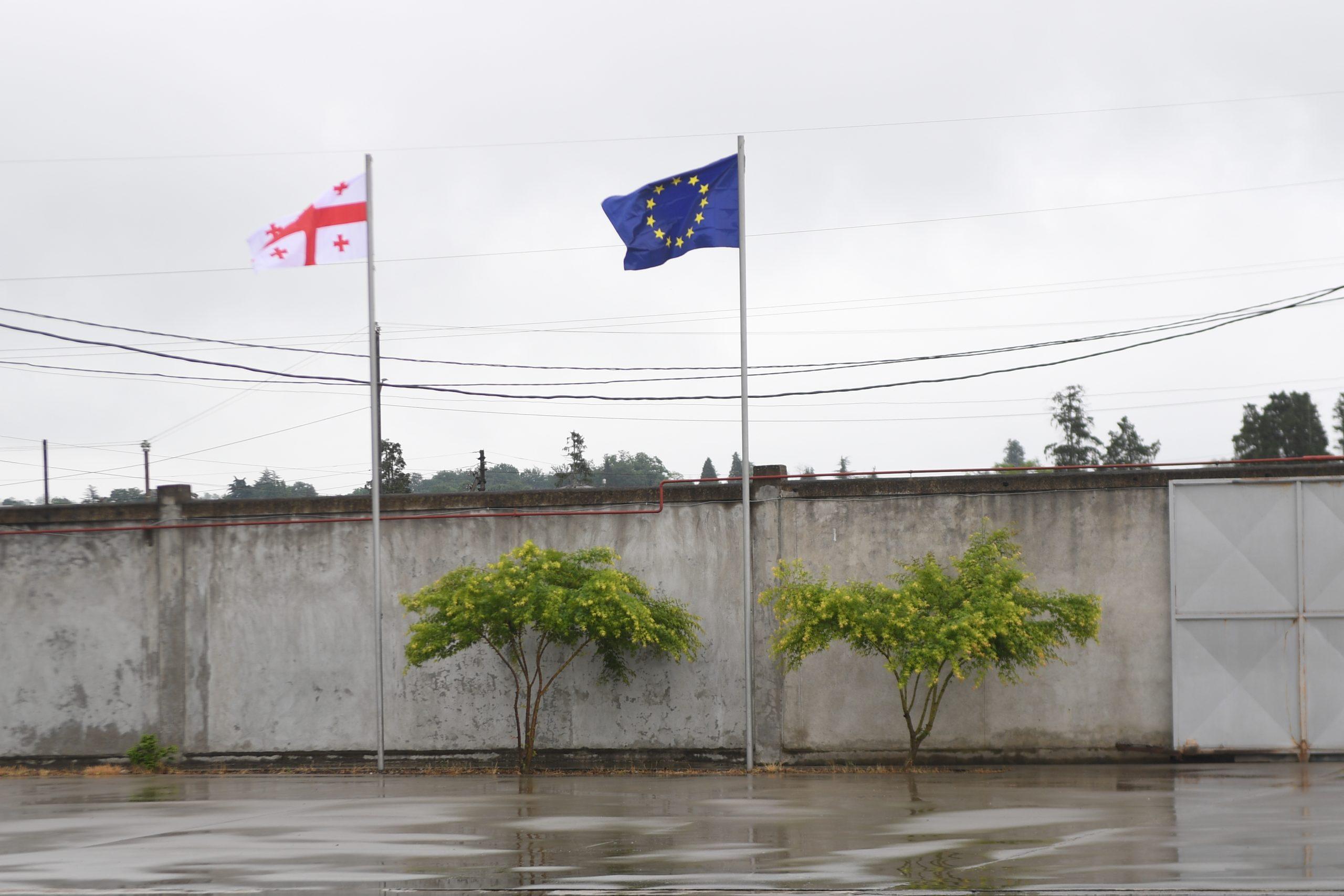 JUD 3901 scaled 1 #общество EIB Group, InnovFin, Грузия-ЕС, евросоюз, спонсорский контент, фундук