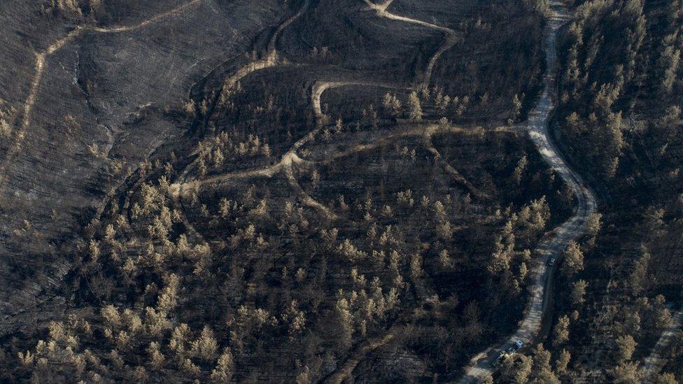119933570 hi069356932 Новости BBC крушение самолета, пожары в Турции